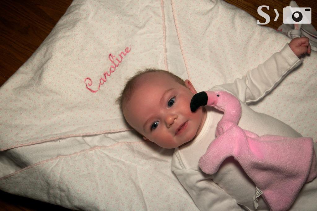 Caroline - Pink Flamingo friend