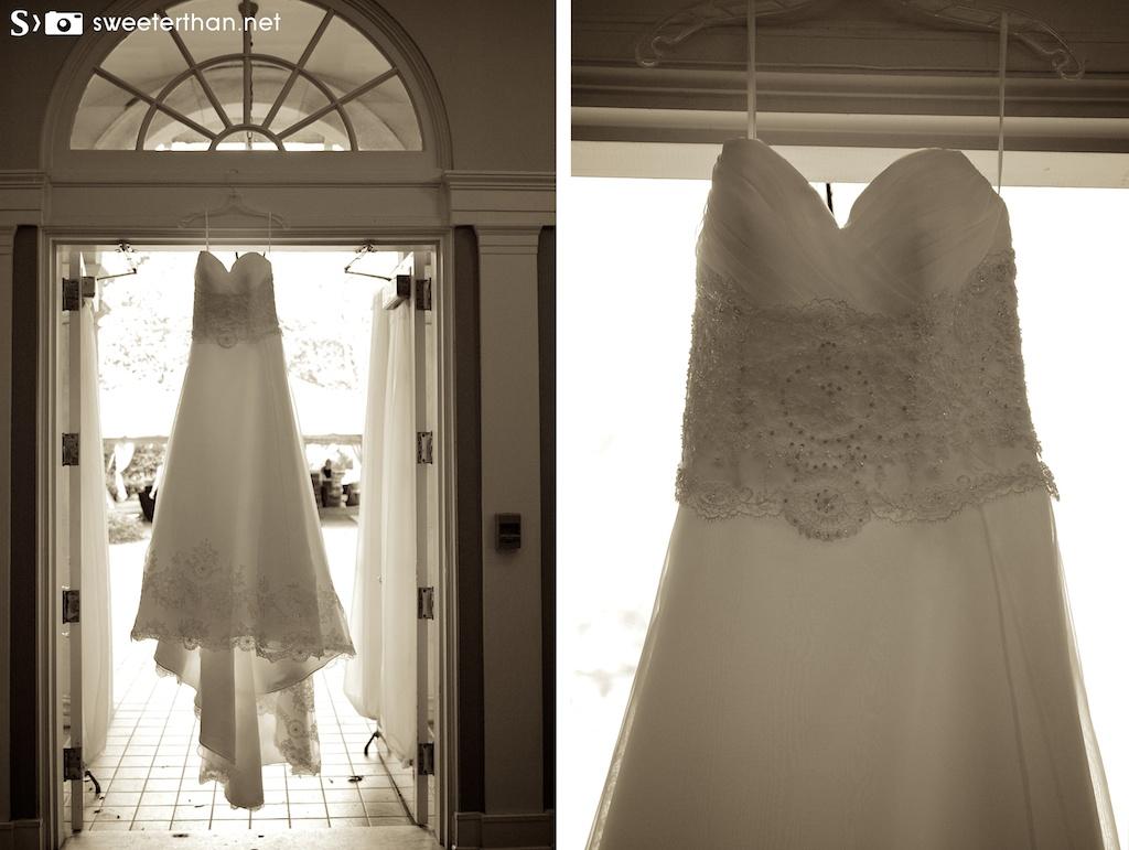 Taniesha's Dress
